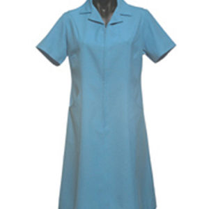 Karen Nurse Dress